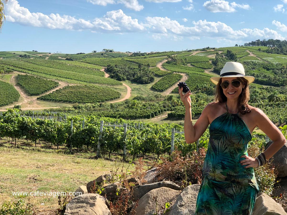 vinícolas do Uruguai para visitar